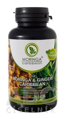 MORINGA Dia MORINGA & GINGER Caribbean cps 1x120 ks